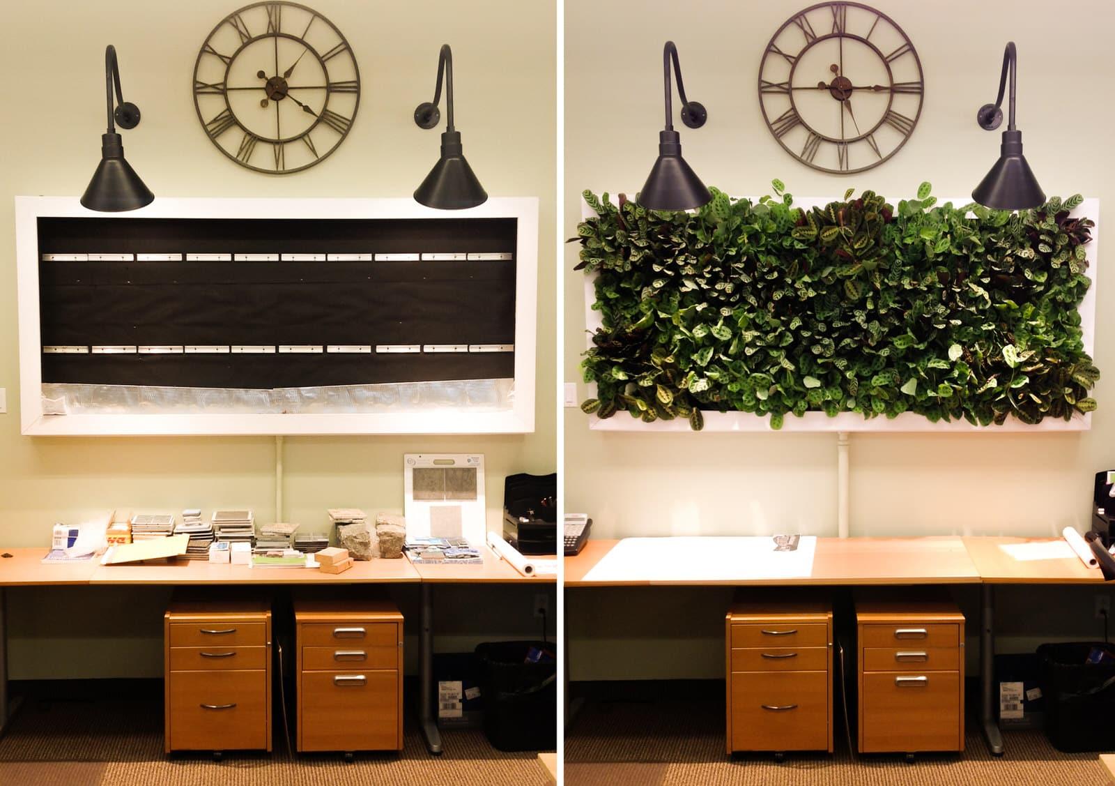 Greenwall - Office - Comparison